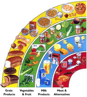Persuasive Essay About Eating Healthy Food Chart